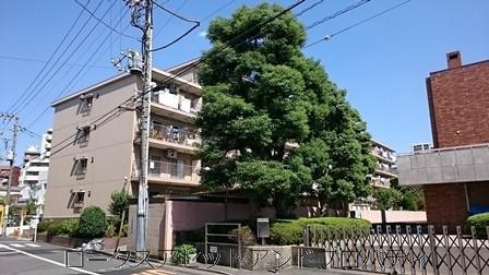 亀戸ハイツ21111