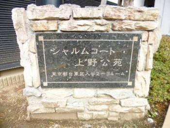 シャルムコート上野公苑9011