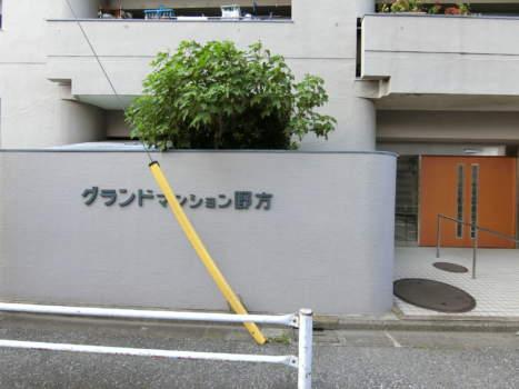 グランドマンション野方外観・共用部9