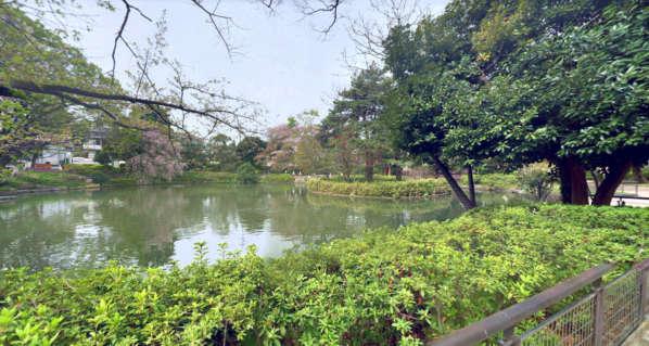 ルミナス下井草-妙正寺公園