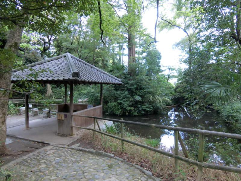 おとめ山公園 (2)