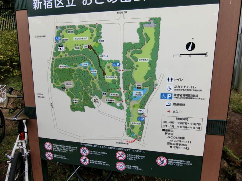 おとめ山公園 (4)